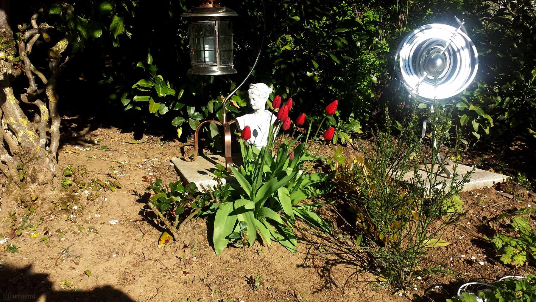 Geschlossene Tulpenblüten in unserem Garten am 5. Mai 2021