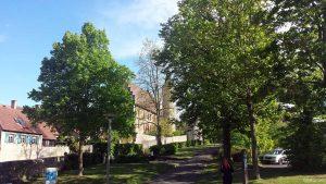 Klingentor in Ochsenfurt