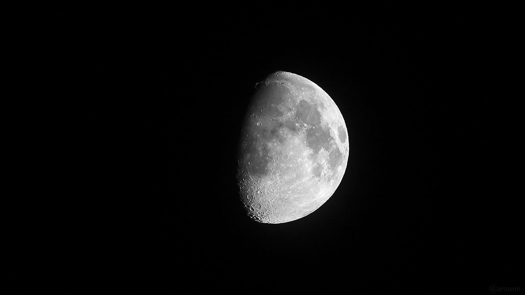 Goldener Henkel am zunehmenden Mond am 22. Mai 2021