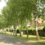Am Dorfgraben in Goßmannsdorf am Main