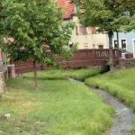 Mitten durch Goßmannsdorf fließt der Schafbach, der anschließend in den Main mündet.