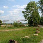 Wirtschaftsweg in Goßmannsdorf am Main