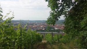Blick vom Würzburger Schalksberg auf die Stadt