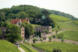 Blick vom Würzburger Stein auf das Schlosshotel Steinburg