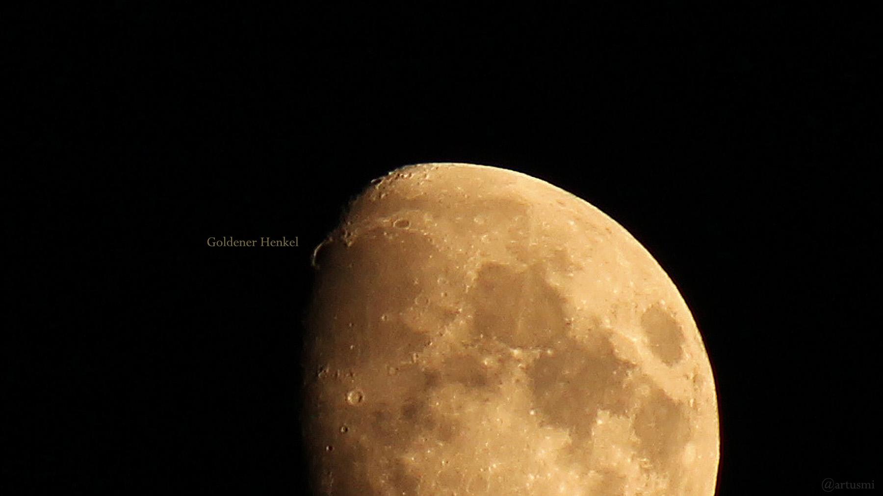 Goldener Henkel am 19. Juli 2021 am zunehmenden Mond