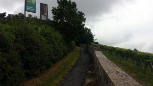 Rotkreuzsteige am Würzburger Stein