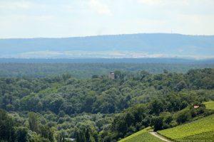 Turm des Schlosses Hallburg in Volkach