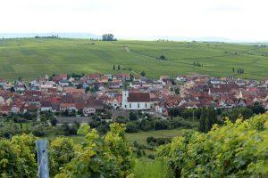 Blick von der Vogelsburg auf Nordheim an der Volkacher Mainschleife