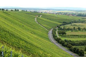 Blick vom Weg unterhalb der Vogelsburg auf die Weinlage Astheimer Karthäuser