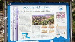 Infotafel zur Volkacher Mainschleife unterhalb der Vogelsburg