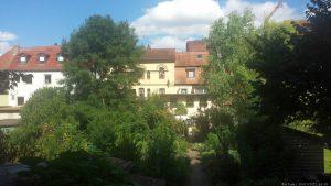 Blick vom Hindenburgpark auf die Altstadt von Volkach