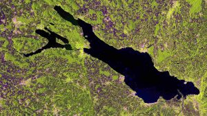 Bodensee aus der Satellitenperspektive
