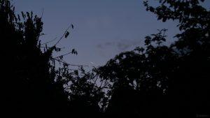 Schmale Mondsichel zwei Tage vor Neumond vor Sonnenaufgang am 5. September 2021