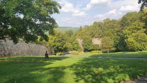 Rasenflächen unterhalb der Festung Marienberg in Würzburg