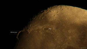 Goldener Henkel am 16. September 2021 am zunehmenden Mond
