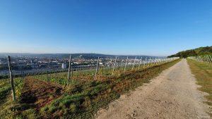 Würzburger Stein am 23. September 2021