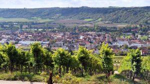 Blick vom terroir f am Kapllenberg auf Eibelstadt am Main