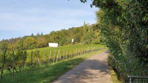 Weg vom terroir f Iphofen zum terroir f Rödelsee am Schwanberg