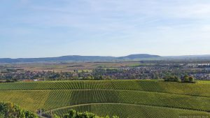 Blick vom terroir f Iphofen auf Iphofen, den Naturpark Steigerwald und den Bullenheimer Berg (rechts am Horizont)