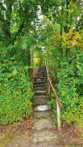 Treppe zur Moltkeruh am Steinberg in Würzburg