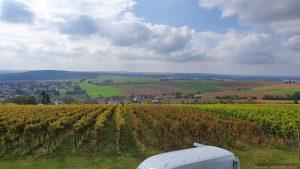 Blick vom begrünten Dach des Kobels am terroir f Rimpar über die Weinberge auf Rimpar