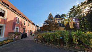 Weingut Juliusspital in Würzburg